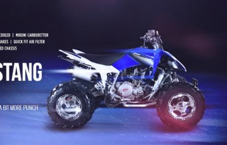 Crossfire Mustang 250cc Evo 3 ATV Quad Bike 1
