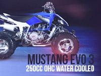 Mustang Evo 3